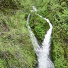 "<B>Wahkeena Creek - The Wahkeenah Falls Necktie</B> Actually this is the first part of Wahkeenah Falls but since you can't see it from the base of the falls or from any other vantage point except this one it gets it's own photo in this gallery. <FONT SIZE=1><A HREF=""http://www.waterfallsnorthwest.com/nws/waterfall.php?st=&num=1922"" TARGET=""_blank"">Northwest Waterfall Survey</A></FONT>"