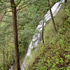 "<B>Coopey Creek - <A HREF=""http://guy.smugmug.com/keyword/Coopey Falls"">Coopey Falls</A></B> (Angels Rest View) Coopey Falls are about 1 mile up the Angels Rest Trail. <FONT SIZE=1><A HREF=""http://www.waterfallsnorthwest.com/nws/waterfall.php?st=&num=1917"" TARGET=""_blank"">Northwest Waterfall Survey</A></FONT>"
