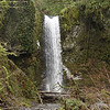 "<B>Multnomah Creek - <A HREF=""http://guy.smugmug.com/keyword/Wisendanger Falls"">Wisendanger Falls</A></B> Wisendanger Falls are about half a mile past the top of Multnomah Falls on the Larch Mountain Trail. <FONT SIZE=1><A HREF=""http://www.waterfallsnorthwest.com/nws/waterfall.php?st=OR&num=1925"" TARGET=""_blank"">Northwest Waterfall Survey</A></FONT>"
