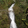 "<B>Youngs Creek - <A HREF=""http://guy.smugmug.com/keyword/Shepperds Dell Falls"">Sheppard's Dell Falls.</A></B> Shepperd's Dell Falls are right on the side of the old Columbia Gorge Scenic Highway but if you don't stop & get out your car you will miss them! You can't see them as you drive by! <FONT SIZE=1><A HREF=""http://www.waterfallsnorthwest.com/nws/waterfall.php?st=OR&num=1914"" TARGET=""_blank"">Northwest Waterfall Survey</A></FONT>"