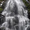 "<B>Wahkeena Creek tributary - <A HREF=""http://guy.smugmug.com/keyword/Fairy Falls"">Fairy Falls</A></B> About a mile & a half up the Wahkeena Trail you will find the lovely Fairy Falls. <FONT SIZE=1><A HREF=""http://www.waterfallsnorthwest.com/nws/waterfall.php?st=&num=1920"" TARGET=""_blank"">Northwest Waterfall Survey</A></FONT>"