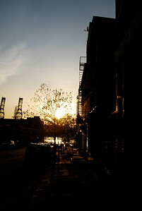 Williamsburg, Brooklyn, NY
