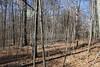 "Saturday, February 19, 2011 - The Dawes Arboretum located in Newark, Ohio - Visit at  <a href=""http://www.dawesarb.org"">http://www.dawesarb.org</a>"