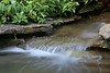 June 30, 2009 Innis Woods Metro Park located in Westerville, Ohio