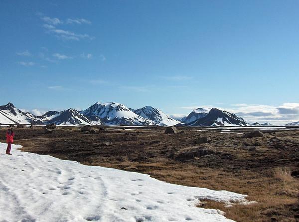 30.04.2005 Skjaldbreiður