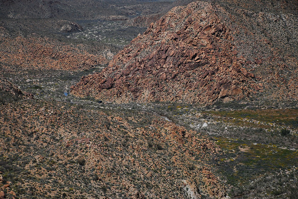 2010-03 Carizzo Canyon, near Ocotillo, CA