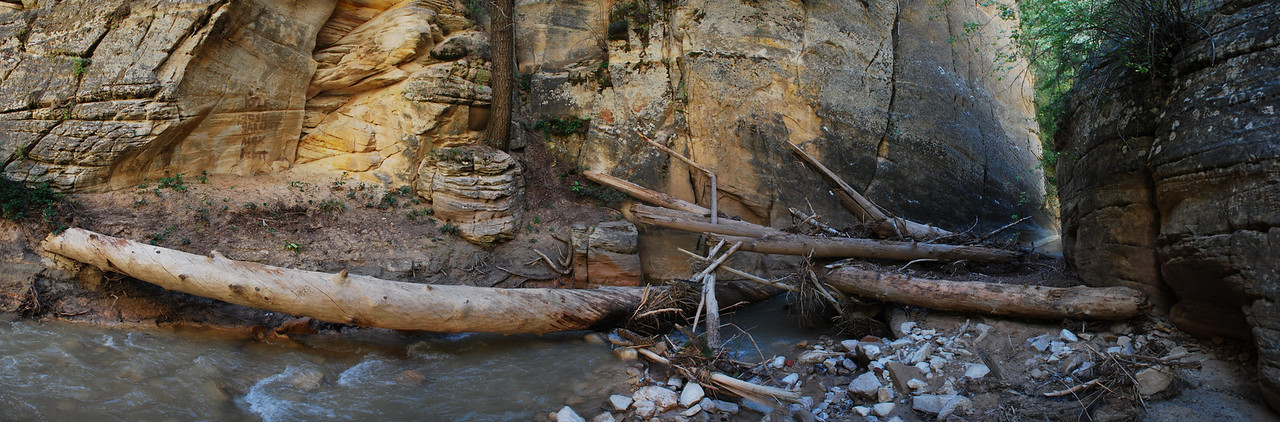 2010-09 Zion Narrows, Chamberlain's Ranch to Deep Creek  Debris carried down the river from previous flash floods