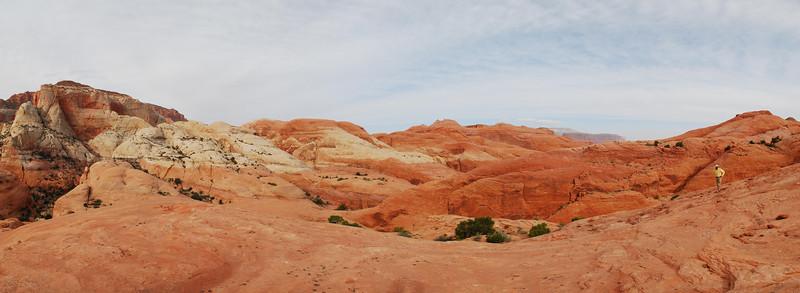 2010-04 - Rainbow Plateau, Day 3 - Surprise Valley Overlook, Upper Anasazi Canyon