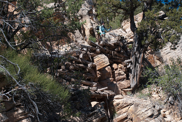 2011-05 Grand Canyon, Day 2 - Grandview Point to Cottonwood Creek