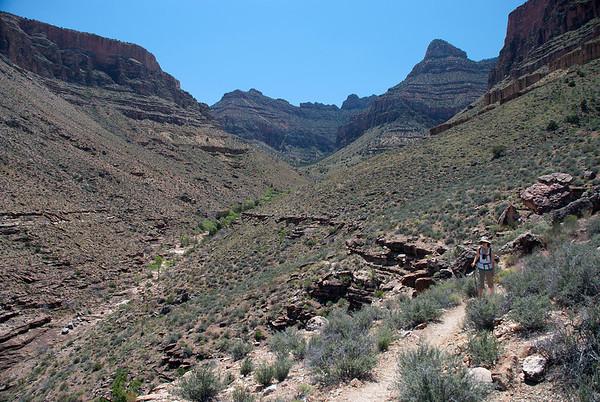 2011-05 Grand Canyon, Day 3 - Cottonwood Creek & Tonto Trail