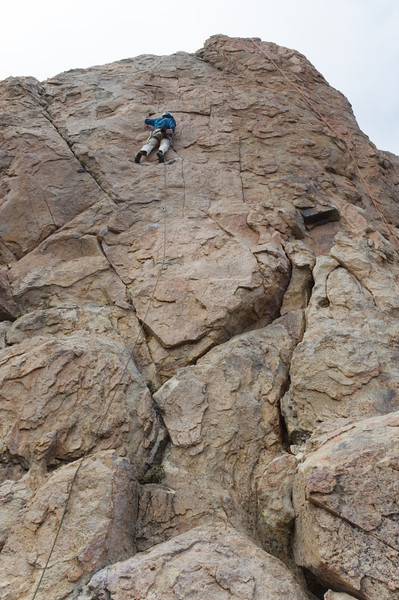 2012-11 Holcomb Valley  Jason leading Golden Poodle (5.9)