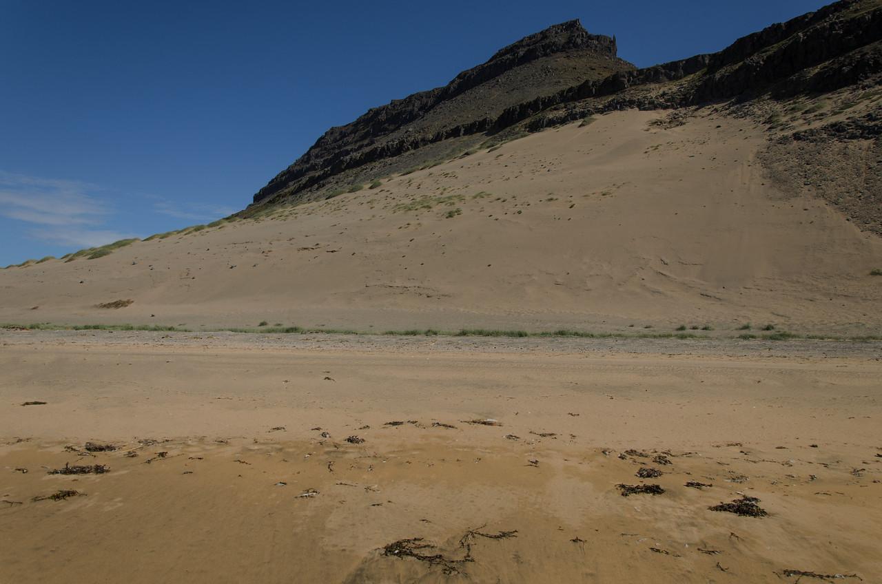 Sandorpnar hlíðar Mannafjalls