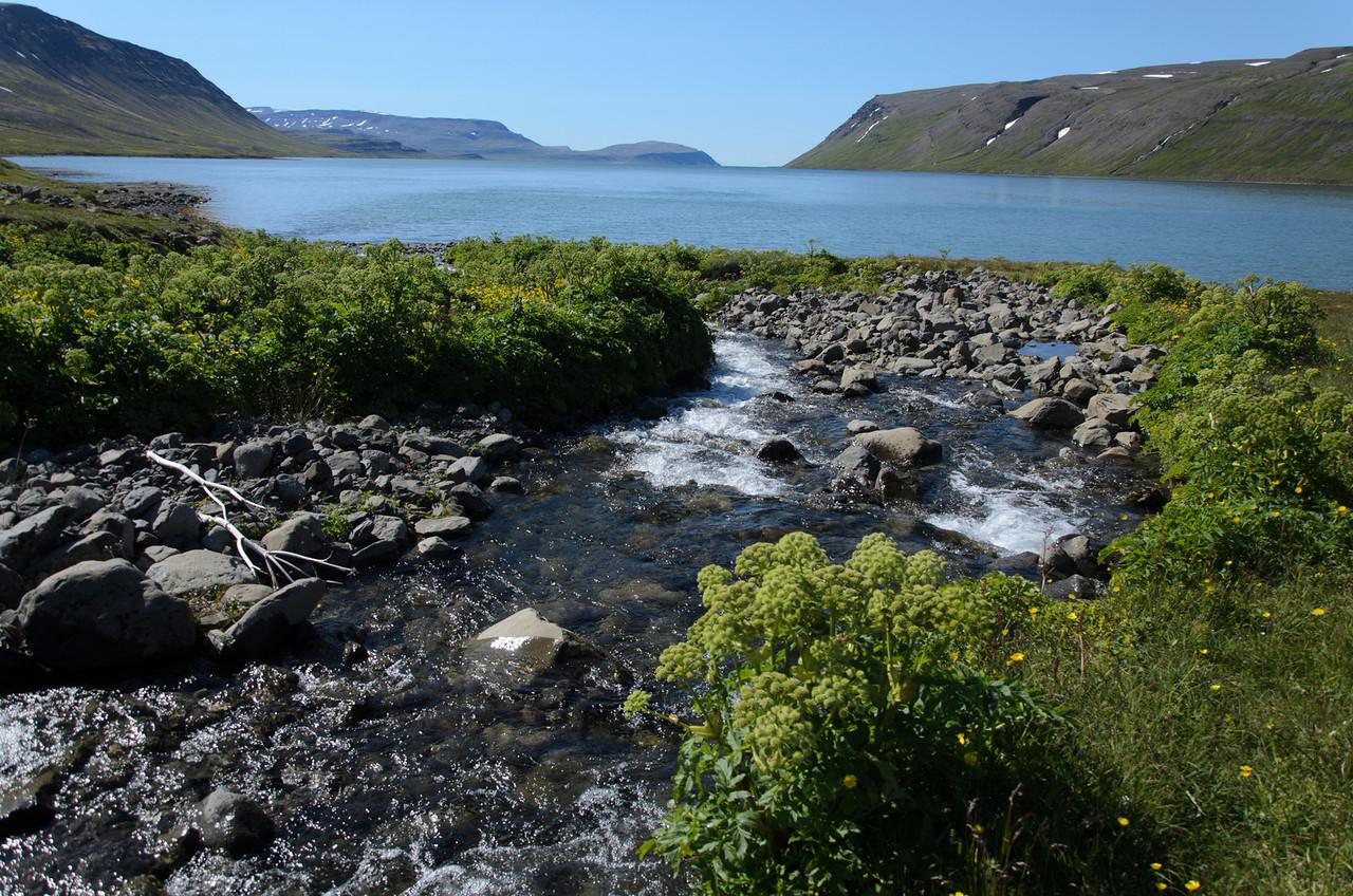 Horft út Hrafnfjörð frá Skipeyri