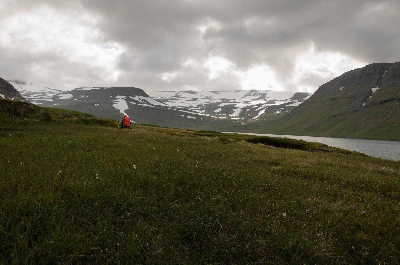 Drungalegur morgunn á Meleyri - en Elífur búinn að skila sér á svæðið.