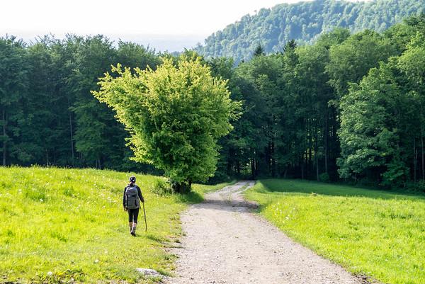 Nockstein Hike