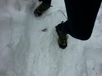 mt monadnock hike alex 2014