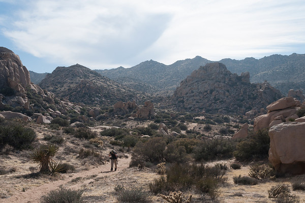 2014-02 Inkopah to Valley of the Moon