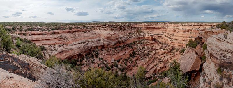 2014-04 Cedar Mesa - Road Canyon (The Citadel)