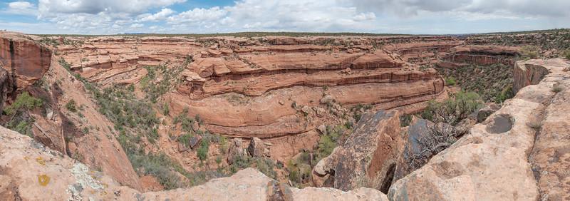 2014-04 Cedar Mesa - McLoyd Canyon (Moonhouse)