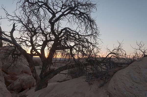 2014-04 Canyonlands NP, Needles District - Pothole Point