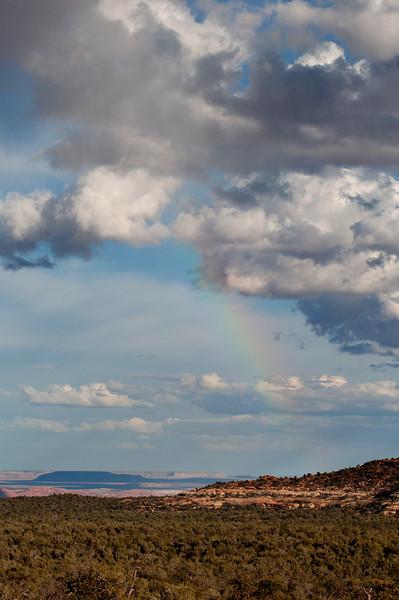 2014-04 Utah - Cedar Mesa, Snow Flats Road
