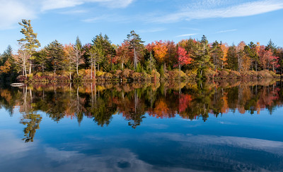 View of our lot on Lake Armington, in full fall colors.