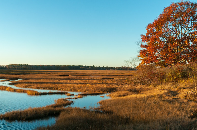 Autumn scene along the Libby River, Scarborough, ME.