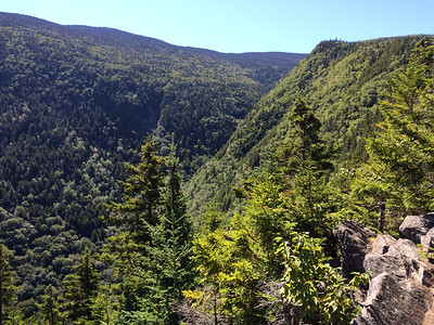 View of Little Tunnel Ravine, from Benton Trail