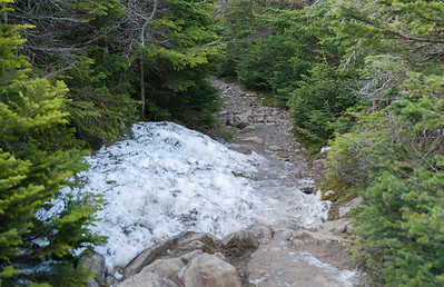 One of the largest remaining patches of snow on the Moosilauke ridge.