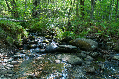 The stream crossing at the junction between Glencliff and Hurricane Trails, near Great Bear cabin.