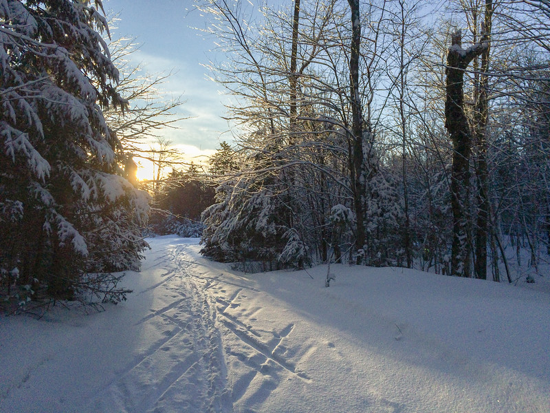 A beautiful morning for skiing near Cummins Pond, after yesterday's snowfall.