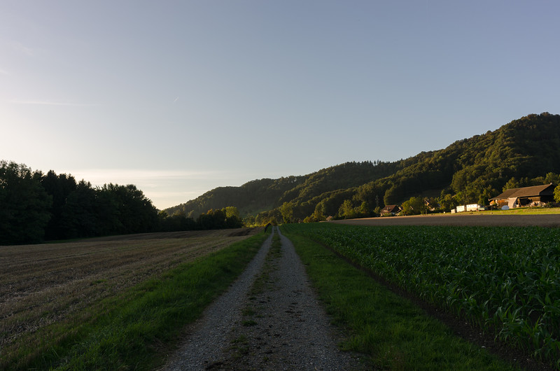 At Türlersee