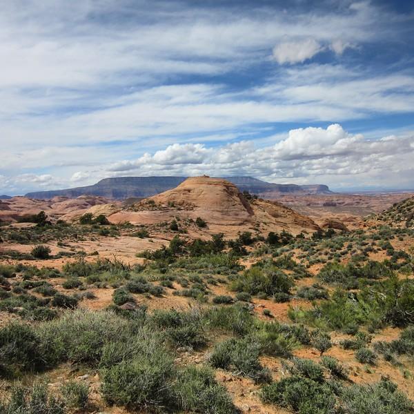 2016-04 Rainbow Plateau, David Eck Photos