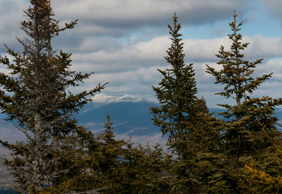 Mount Moosilauke seen through the trees from summit of Mount Cube.
