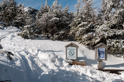 Reaching treeline on Mount Mansfield.