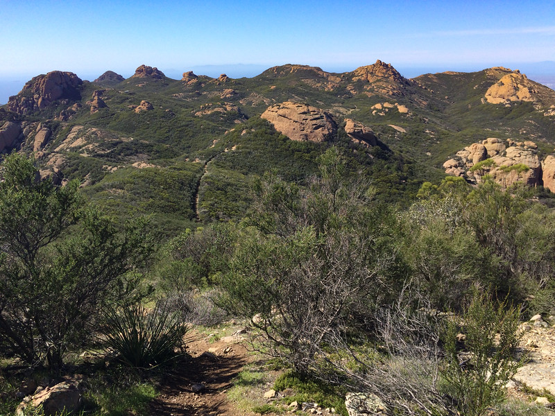View back along the Backbone Trail, whence I came.