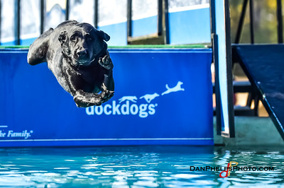 2017 Dock Dogs CLT-15