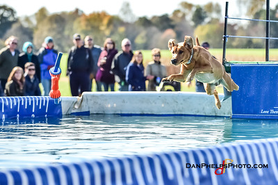 2017 Dock Dogs CLT-22