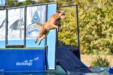 2017 Dock Dogs CLT-10