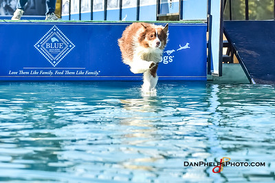 2017 Dock Dogs CLT-16