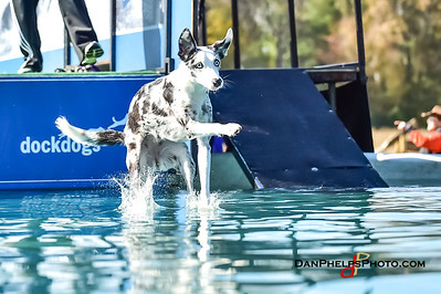 2017 Dock Dogs CLT-19