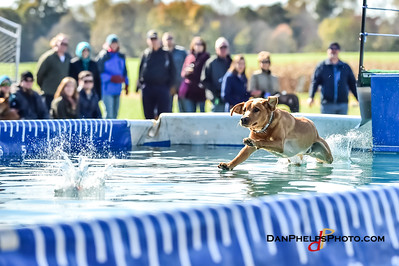 2017 Dock Dogs CLT-23