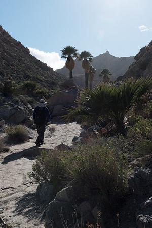 2017-02 Pinto Canyon