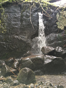 Waterfall on Allen Brook - about 6' high.