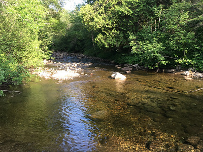 The mouth of Dudley Brook where it meets the Opalescent River.