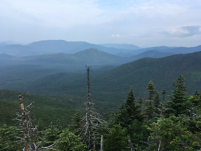 View of Santanoni range (in distance) and Mount Adams (at center) from Allen slide.