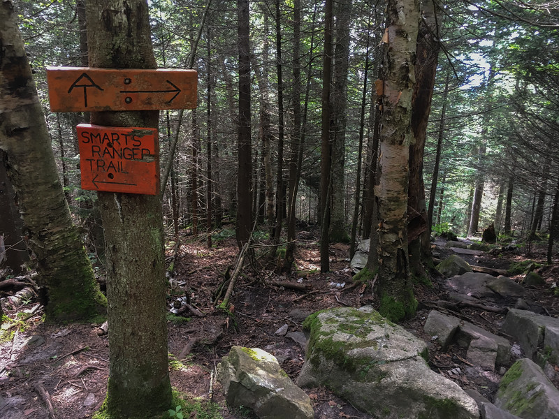 The Appalachian Trail meets the Ranger Trail and they jointly climb the mountain from there.