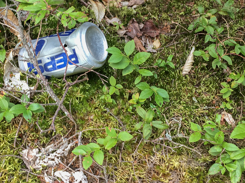A Pepsi can is a clue I must be close to the trail.