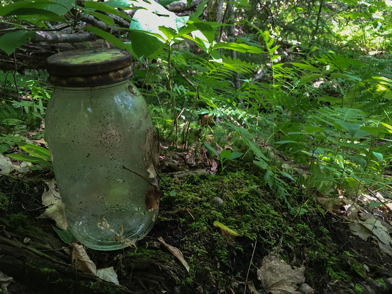 An old jar sits beside an even older road deep in the woods on Smarts Mountain.