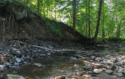 Bank erosion will soon loosen a big rock to fall into Grant Brook.